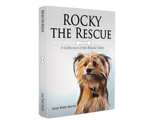 rocky-3d-book-image